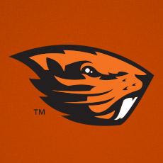 C404a8ce1b5b08a4fbfbac-beaver-logo