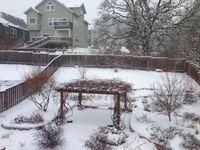Snow_6Feb2014
