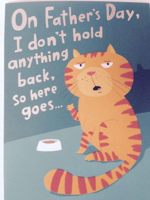 CatCard