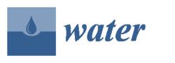 Water-logo