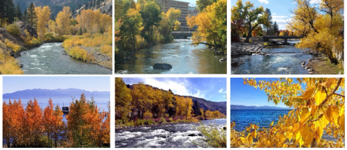 Fall foliage Reno-Tahoe