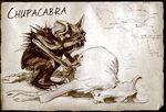 Chupacabra1
