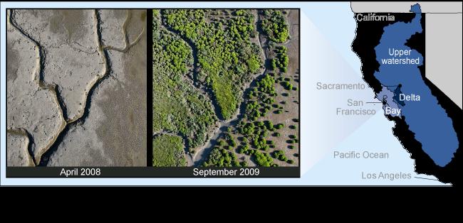 GAO Report: 'San Francisco Bay Delta Watershed - Wide Range