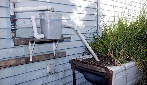 Greywater Guerrillas Waterwired